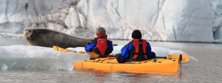 Der sejles i kajak ved isbjerg